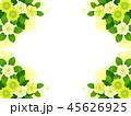 クリスマスローズ 花 お花のイラスト 45626925