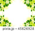 クリスマスローズ 花 お花のイラスト 45626928