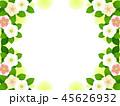 クリスマスローズ 花 お花のイラスト 45626932