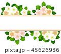クリスマスローズ 花 寒芍薬のイラスト 45626936