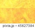 水彩 背景 テクスチャーのイラスト 45627384