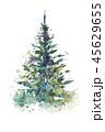 クリスマス 樹木 樹のイラスト 45629655