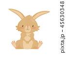 うさぎ ウサギ 兎のイラスト 45630348