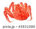 水彩画 タラバガニ カニのイラスト 45631080