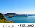 油津港に寄港する大型クルーズ船 45631092