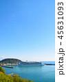油津港に寄港する大型クルーズ船 45631093