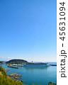 油津港に寄港する大型クルーズ船 45631094
