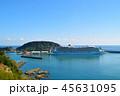 油津港に寄港する大型クルーズ船 45631095