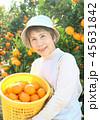 みかん収穫 シニア女性 帽子 かご 45631842