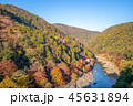 aerial view of arashiyama, kyoto, japan in autumn 45631894