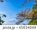 富士山 紅葉 秋の写真 45634049