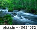 【千葉県】奥入瀬渓流② 45634052