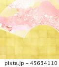 和柄 春 桜のイラスト 45634110