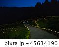 【千葉県】大山千枚田のライトアップ 45634190