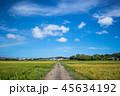 【千葉県】真夏の田園風景① 45634192
