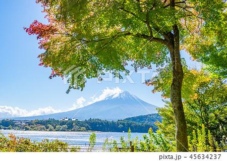 【山梨県】秋の富士山 45634237
