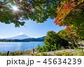富士山 秋 紅葉の写真 45634239