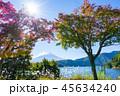 富士山 秋 紅葉の写真 45634240