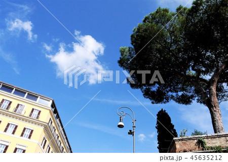 ローマ 地中海松 街並み 45635212