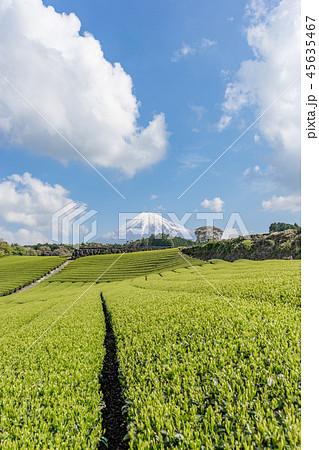 【静岡県】富士山と茶畑 45635467