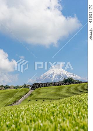 【静岡県】富士山と茶畑 45635470