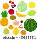 果物 フルーツ セットのイラスト 45635551