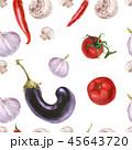 シームレス トマト なすのイラスト 45643720