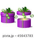 マンガ ギフト プレゼントのイラスト 45643783
