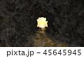 洞窟 45645945