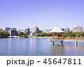 大濠公園 浮見堂 池の写真 45647811