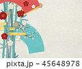 扇 梅 竹のイラスト 45648978