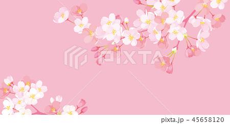 桜 背景イラスト 45658120