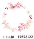 桜 春 花のイラスト 45658122