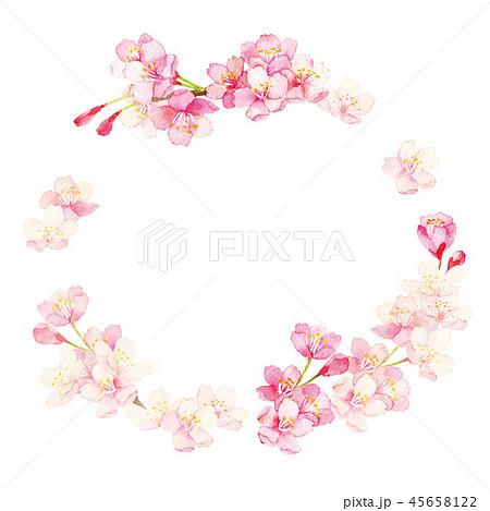 桜 水彩イラスト 45658122