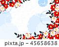 椿 水色 45658638