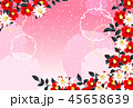 椿 ピンク 45658639