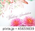 結婚式招待状 45659839