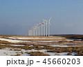 オトンルイ風力発電所 風力発電所 風力発電の写真 45660203