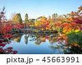 autumn foliage at Eikando Temple in Kyoto, Japan 45663991