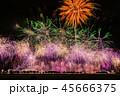 花火 花火大会 大曲花火大会の写真 45666375