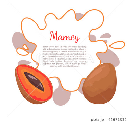 Mamey Exotic Juicy Fruit Vector Poster Frame Text 45671332