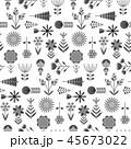 モノクロ モノクローム 白黒のイラスト 45673022