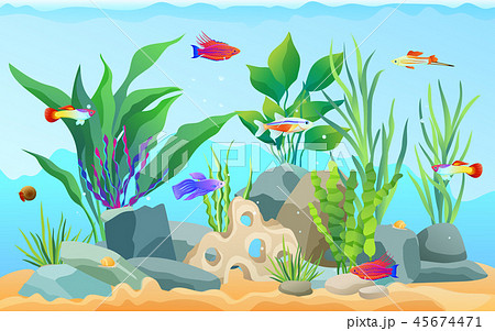 Hand Drawn Aquarium With Fish And Seaweed Iconsのイラスト素材