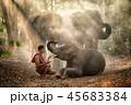 人々 人物 森林の写真 45683384