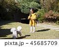 犬 子犬 本 45685709