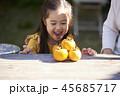 フルーツ 果物 女の子 45685717