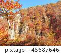 紅葉 秋 風景 背景 45687646