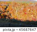 紅葉 秋 風景 背景 45687647
