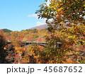 紅葉 秋 風景 背景 45687652