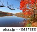 紅葉 秋 風景 背景 45687655
